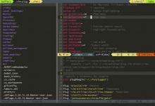 GVim with netrw+airlines+ctrlspace+xkb-switch+monokai theme+Source Pro font